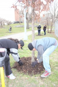 Youth volunteers Manny Perez and Isaias Vega at St. Mary's Park on Martin Luther King Day.