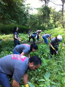 Over 80 volunteers worked near Muskrat Cove picking up trash and cleaning the river banks. Photo: Ileanette Morales