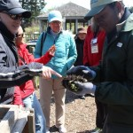 Visitors learned about composting and gardening.
