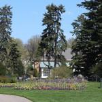 The Home Gardening Center at the New York Botanical Garden.