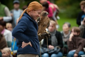 Get the opportunity to look out for raptors on Raptor Day at Wave Hill.