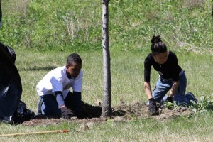 weeding and mulching at Starlight Park May 4