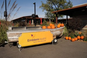 EmblemHealth held its Second Annual Pumpkin Carving event.  Photos: QPHOTONYC