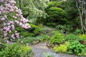 Garden Highlights Walk 6 credit Wave Hill(web)