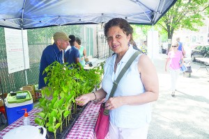 """You can't find good kale at the supermarket,"" said Mili Bonilla."