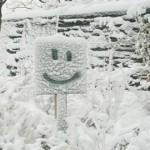 Is the Cold Good for You? </br> Es el frío realmente bueno para usted?