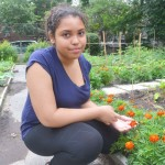 Abelyna G. has grown fond of marigolds.
