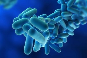 Free Legionnaires' disease evaluations are being offered.
