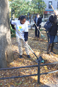 Volunteers pitch in to clean up the park.