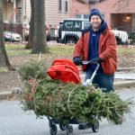DSNY collected more than 214,000 trees last year.