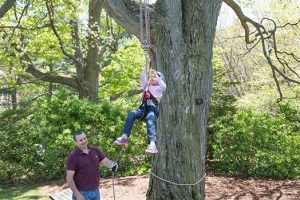 Bring your young arborist to Wave Hill.