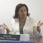 """One bill is not enough,"" said State Senator Marisol Alcántara."