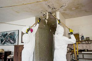 AmeriCorps members inspecting damaged houses in Humacao. Photo: AmeriCorps