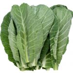 Collard greens are a staple in Southern cuisine.
