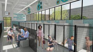 El refugio propuesto se espera que acomode a 260 animales.